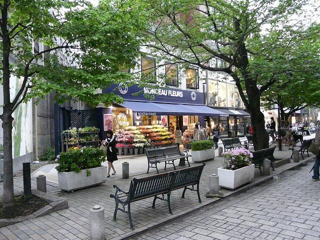 東横線でマンションを買うならこの街に決まり!3つの目的から見る住宅の買い方